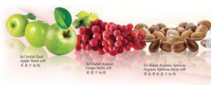 what is phytoscience about