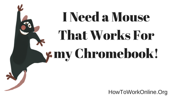I Need a Mouse That Works For my Chromebook!