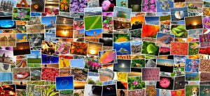 a collage of images